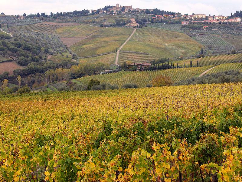 Panzano in Chianti liegt als historisches Dorf malerisch hoch über den Weinbergen und Wäldern der Region.