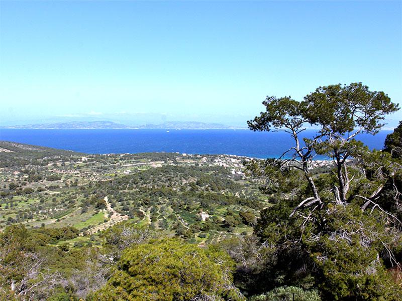Aphaia hatte eine beneidenswerte Aussicht über das Meer nach Athen.