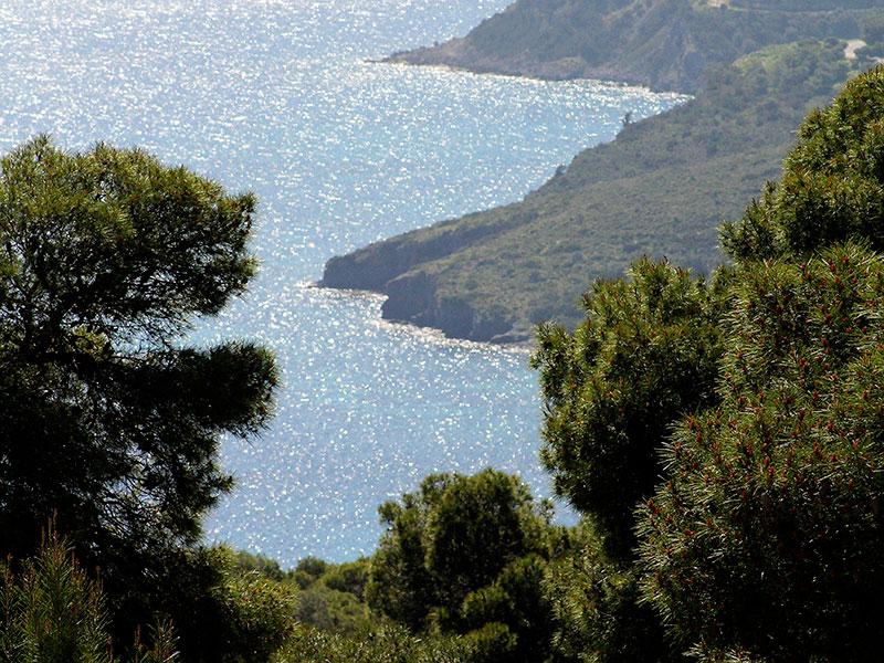 Blick auf die Bucht von Agia Marina.