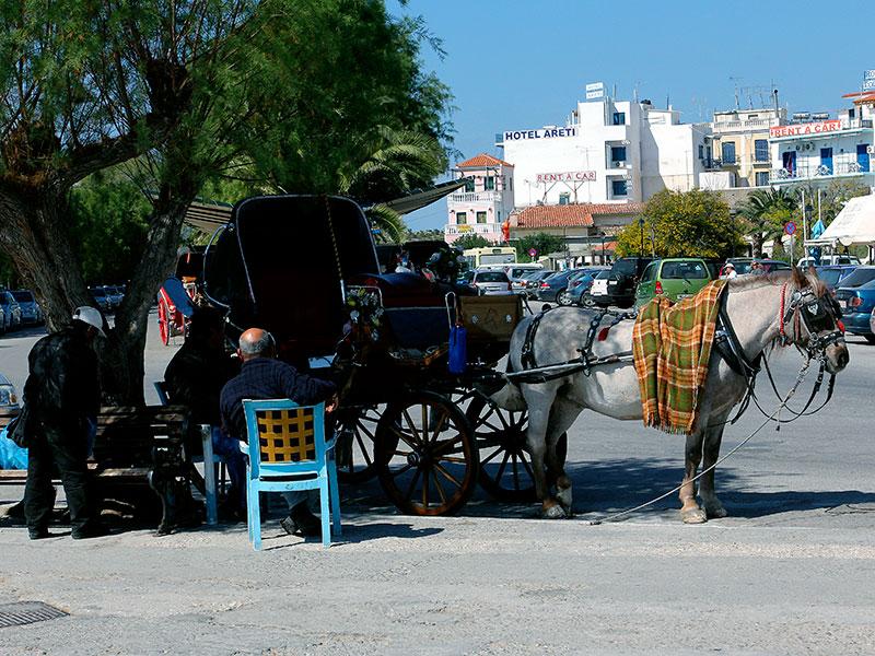 Pferdekutschen fahren durch die Altstadt, auch gemütlich!