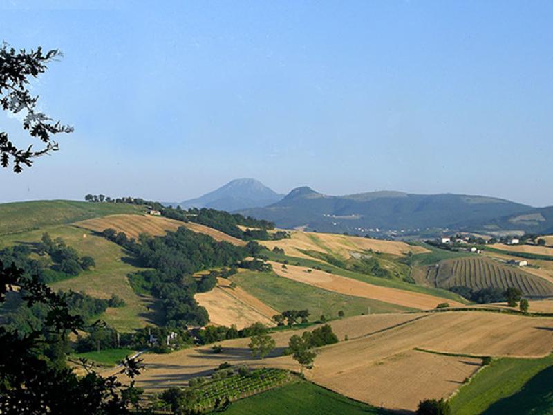 Panoramablick auf die Landschaft der Marken.