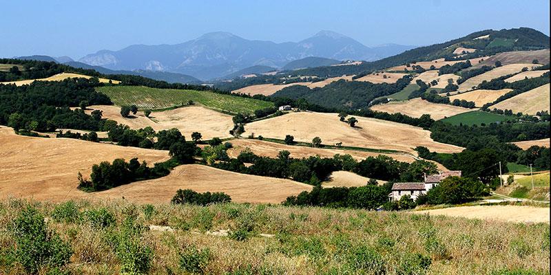 Marken: Archäologische Entdeckungsreise an der Via Flaminia - Die malerische Landschaft der Marken bei San Pietro di Arcevia, unten rechts unser Ferienhaus.