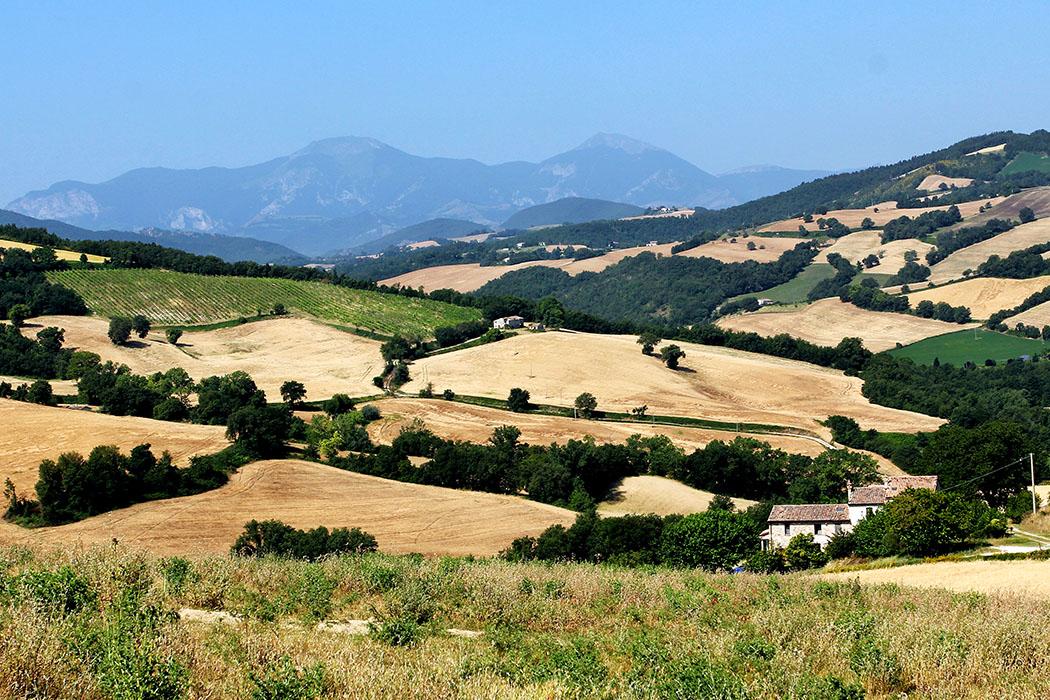 Marken: Archäologische Entdeckungsreise an der Via Flaminia