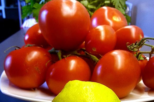 Die Zutaten sollten frisch vom Markt sein. Tomaten, Zitrone, Petersilie und natürlich das Fischfilet!