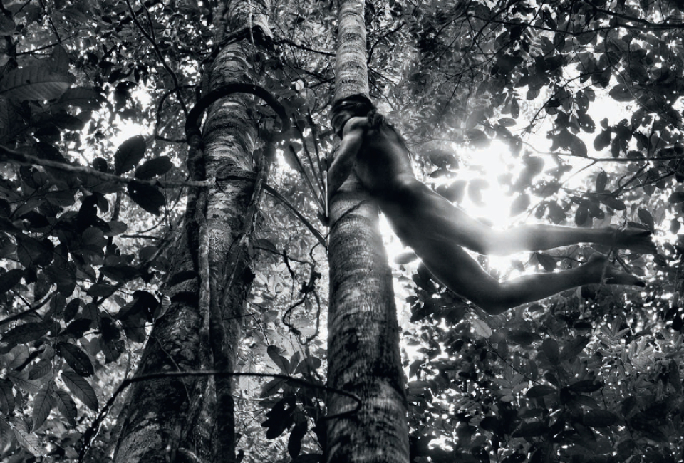 Jäger, Zoe Indianer, Brasilien, 2009