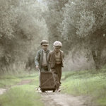 The Olive Tree Will Always Be Here'' film still, © Indigo View & GAEA.
