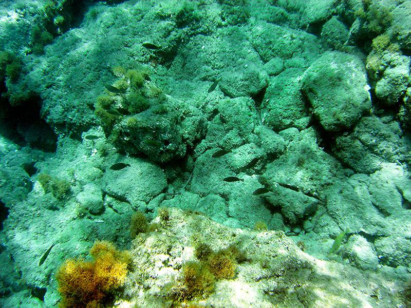 Unterwasser sehen wir Reste von ehemals befestigtem Damm zur Insel.