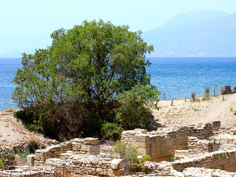 Uralte Mauern vor türkisblauem Meer.