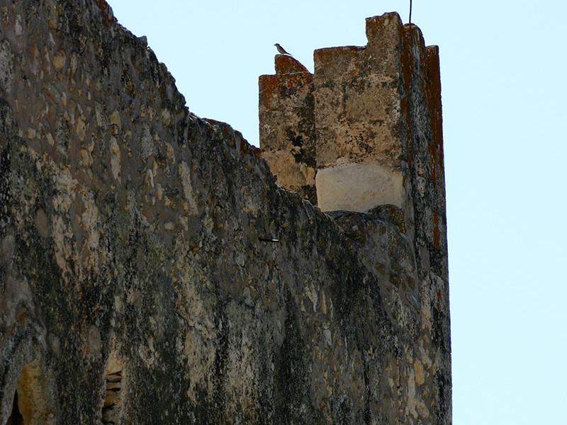 Die Mauern flüstern leise.