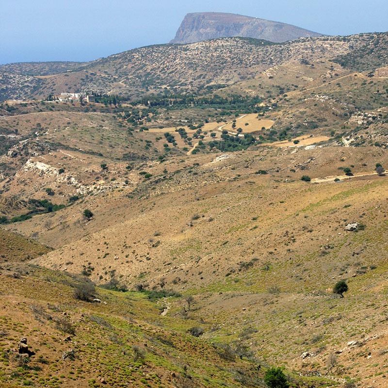 Das weite von Olivenbäumen bestandenem Hochtal bei Moni Odigitrias.