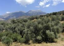 Ida Psiloritis Crete Greece