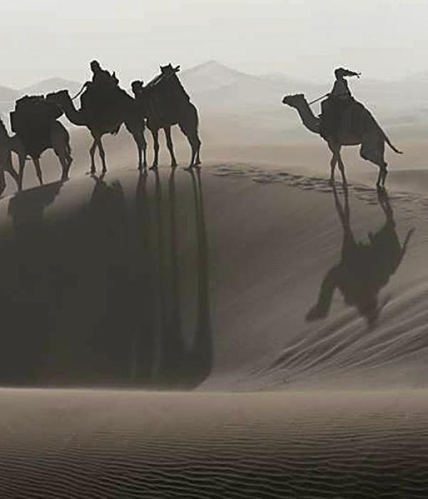 Sehnsuchtslandschaften hinter den Dünen