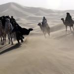 film queen of the desert werner herzog