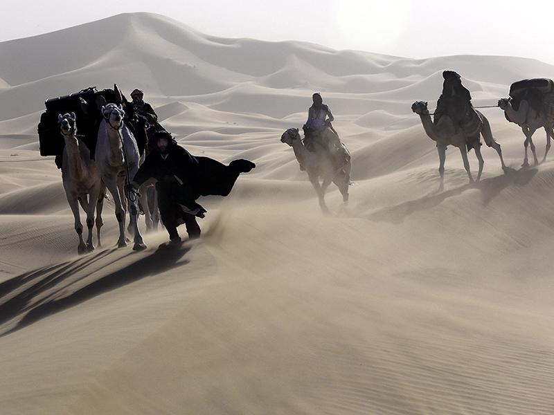 Berlinale: Werner Herzogs Wüsten-Epos