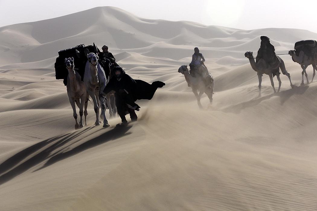 """Berlinale: Werner Herzogs neuer Film """"Queen of the desert"""" – Ein starbesetztes Wüsten-Epos"""