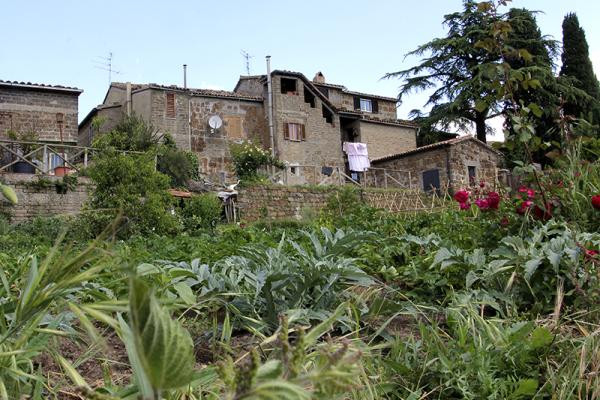 In den Gärten wird überwiegend Gemüse herangezogen.