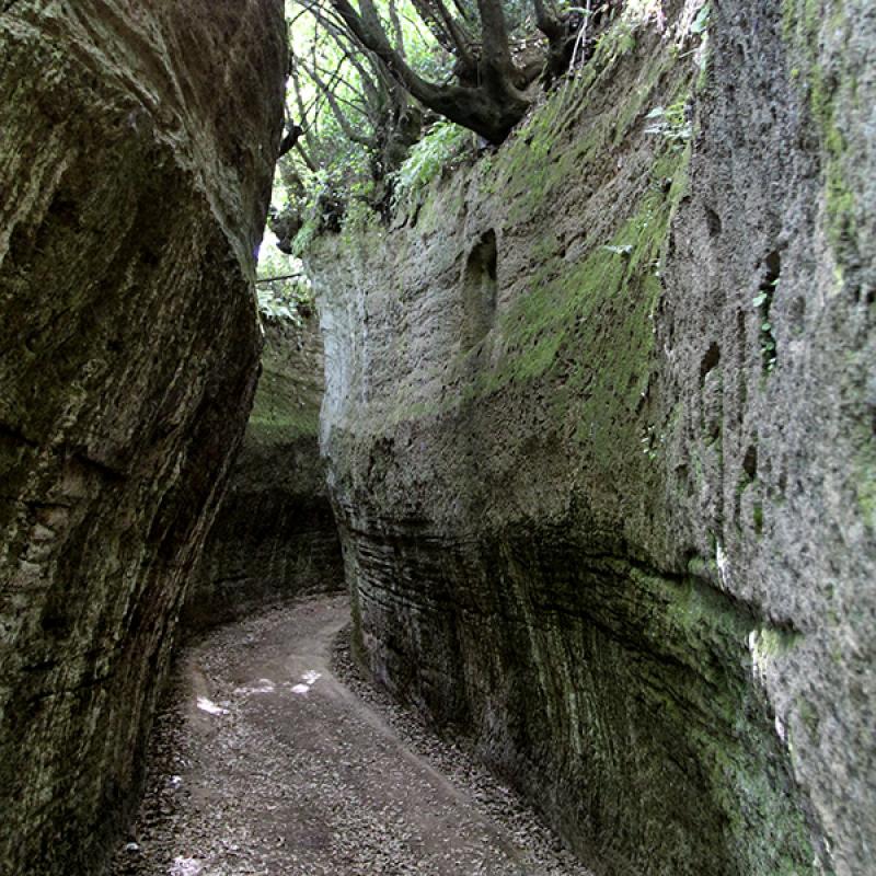 Ein etruskischer Hohlweg.
