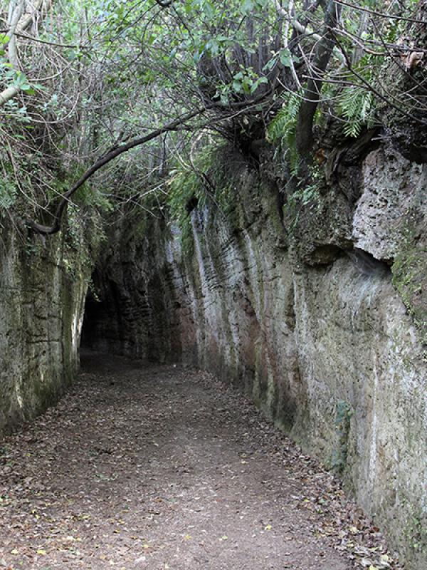Bis zu 20 Meter hoch ragen die glatten Felswände auf, die den Pfad begrenzen.