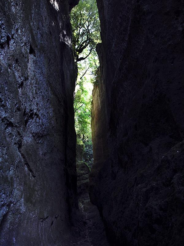 Über den Entstehungsgrund der Vie Cave scheiden sich die Geister.
