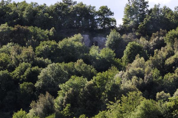 Im Wald fast nicht zu entdecken: Die Tomba Ildebranda.