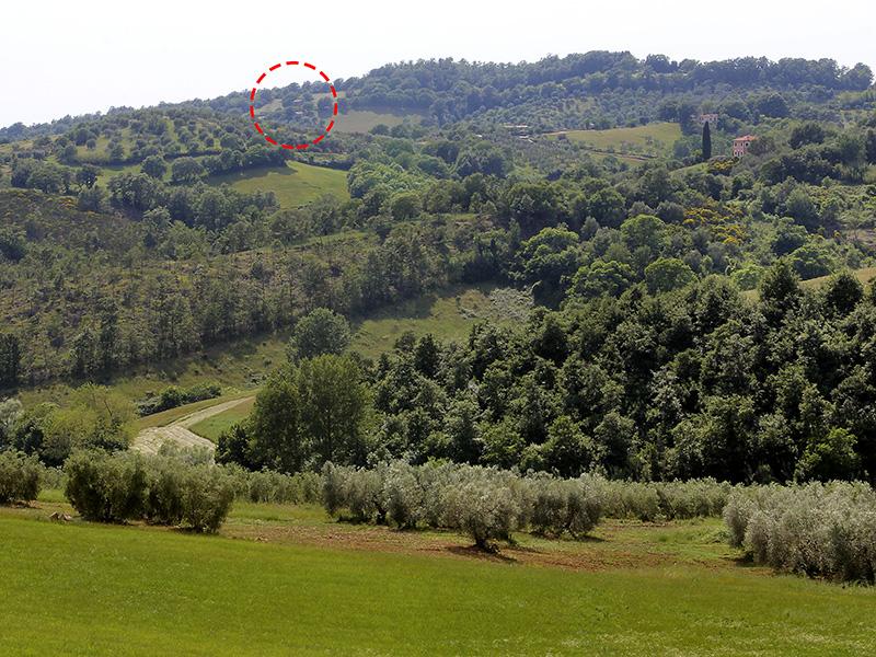 Die Lage des Ferienhauses bei Manciano, ruhig und ländlich.