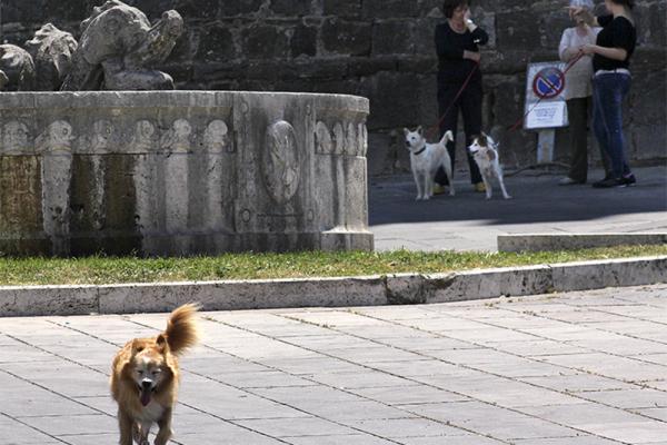 Italienfllair auf der Piazza Garibaldi.