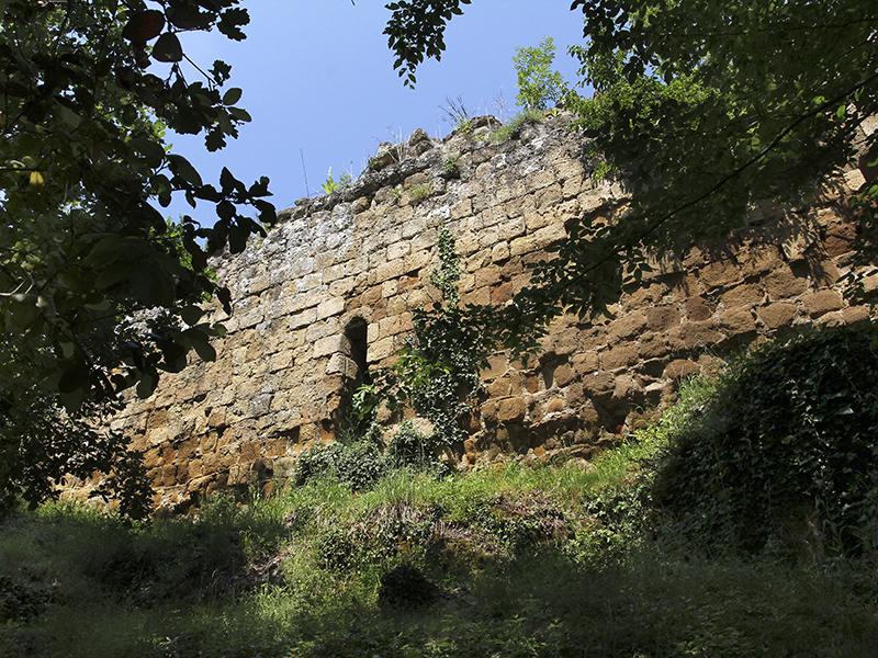 Die Burg von Vitozza wurden von den Grafen von  Aldobrandeschi im 11. Jhd. erbaut.