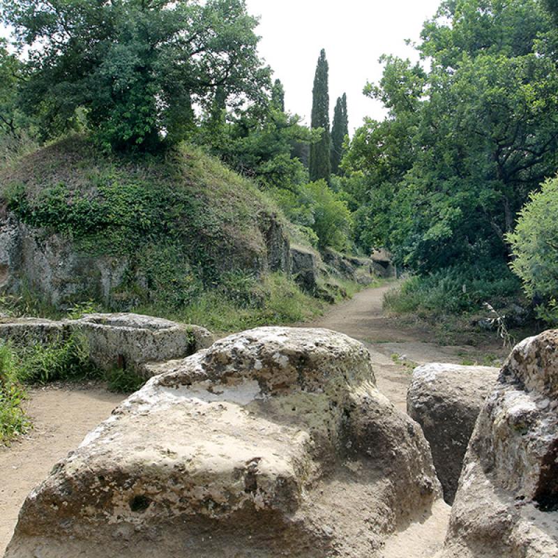 Die Nekropole von Ceveteri ist wie eine Stadt angelegt und etwa 15 Hektar groß.