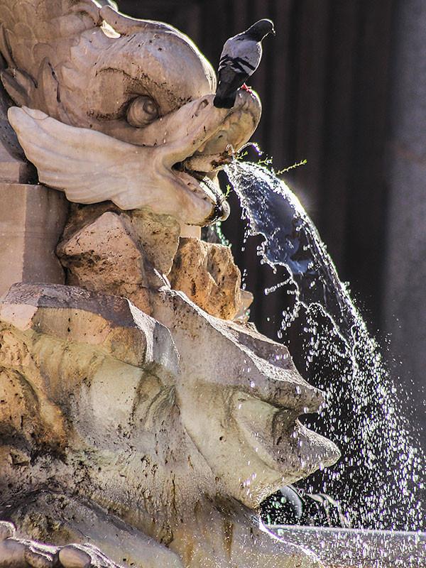 Der Brunnen wurde von Giacomo Della Porta im Jahr 1575 unter Papst Gregor XIII gebaut.
