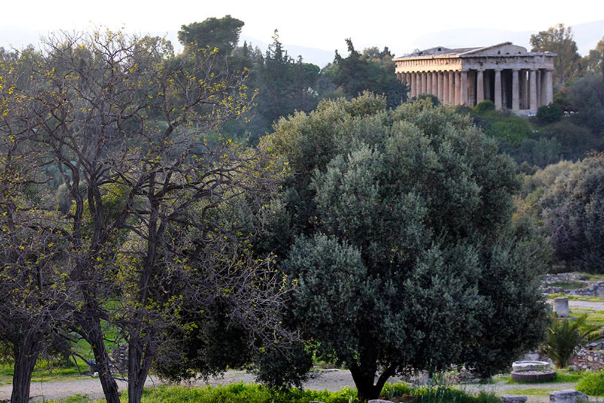Der Tempel des Hephaistos ist der am besten erhaltene Tempel Griechenlands. Es fehlen nur das Dach und Teile der Giebel. Er wurde später in eine Kirche umgebaut, daher ist er so gut erhalten geblieben.