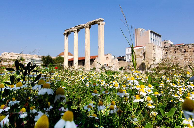 Die Hadriansbibliothek bestand aus einem großen Innenhof und dem Bibliotheksgebäude mit Lese- und Vortragssälen. Das Blumenmeer der Frühjahrs ist entzückend.