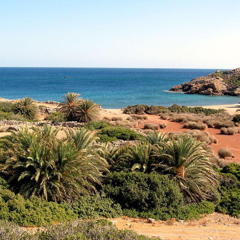 Der hübsche Erimoupolis Beach liegt im geschichtsträchtigen Gelände der hellenistischen Stadt Itanos. (Foto: Paul, flickr)
