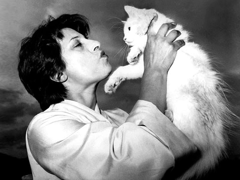 Eine berühmte Katzenfreundin war die Schauspielerin Anna Magnani. Während sie am Teatro Argentina spielte, verbrachte sie die Spielpausen mit dem Füttern ihrer geliebten Katzen.