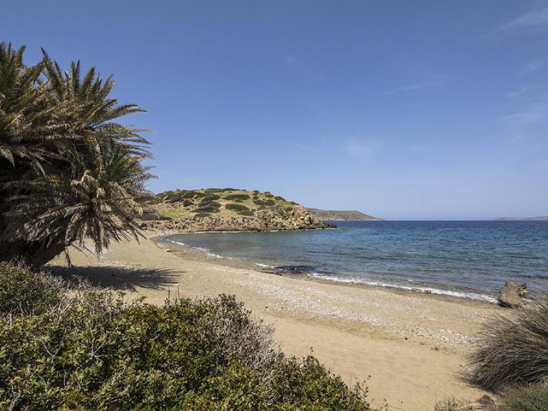 Der perfekte Urlaubstag -an einem Palmenstrand in Kreta.