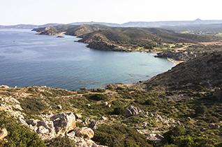 Kreta-Frühlingstagebuch (4): Itanos – Palmen, Sandstrand und Ruinen