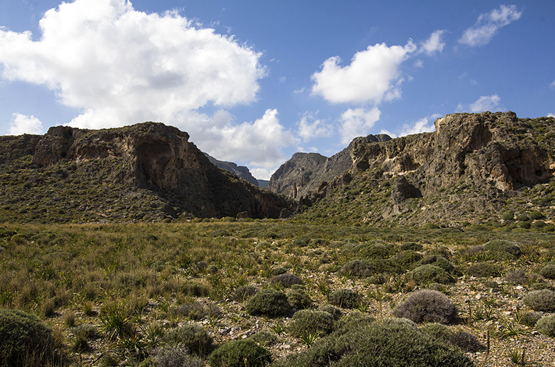 Eine Wanderung durch die Zirgou-Schlucht ist von Xerokampos aus möglich.