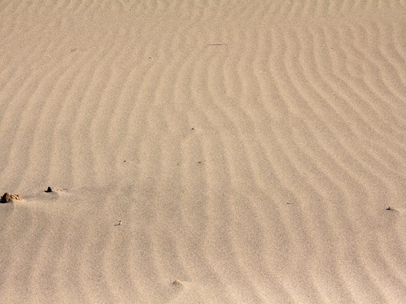 Der Wind modelliert kleine Wellen in den Sand.