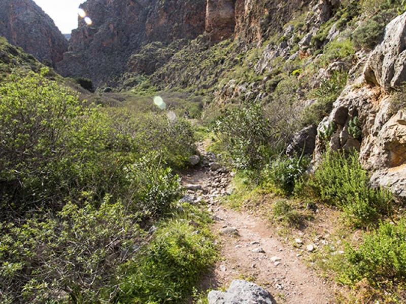 Tal der Toten wird die Schlucht genannt, weil in minoischer Zeit hier die Toten in Höhlen bestattet wurden.