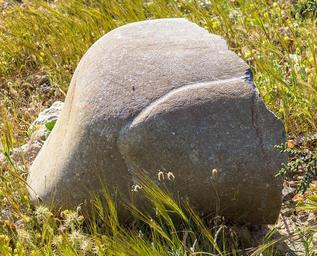 reise-zikaden.de - Griechenland, Kreta, Lasithi, Sitia, Xerokampos, Halbinsel Trachilos, Agios Nikolaos, Farmakokefalo, Hellenismus, Statue. - Fragment einer Statue. Wir vermuten es könnte sich um den hinteren Schenkel einer Löwenstatue handeln.
