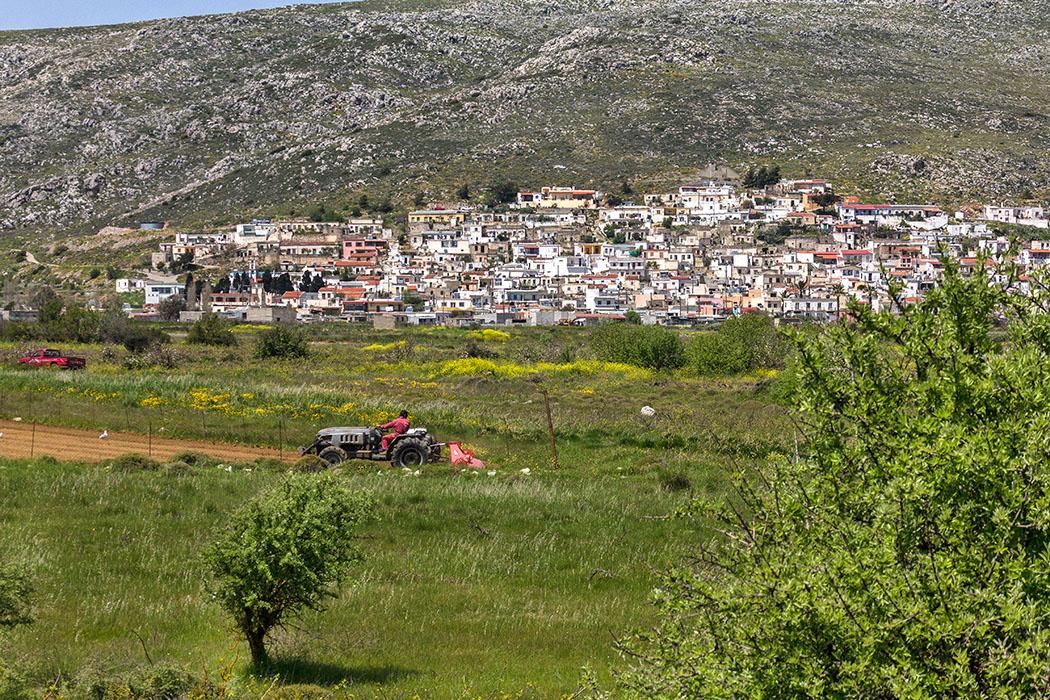 reise-zikaden.de - Griechenland, Kreta, Lasithi, Sitia, Ziros, Ostkreta, Dorf, Bauern, Felder.