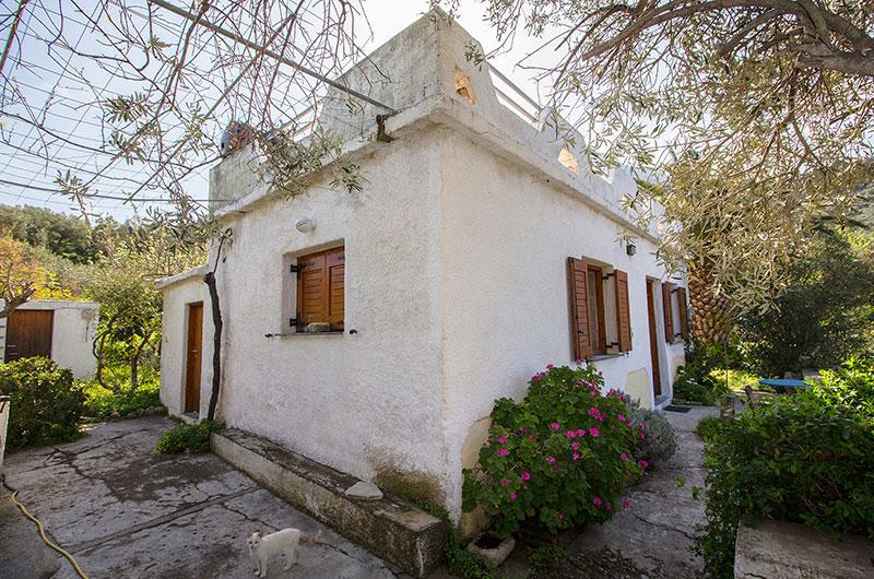 Das Haus mit Terrasse und Katze. Links das Häuschen mit der Waschmaschine.