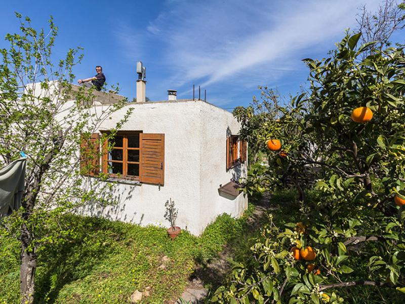 Blick vom Garten mit Wäscheleinen und Mandarinenbaum auf unser Haus. Hans genießt die Aussicht vom Dach.