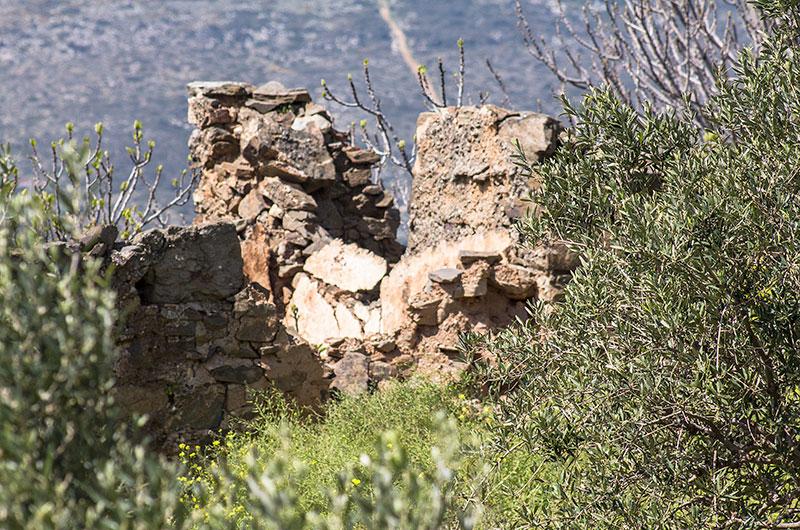 Mittlerweile sind die Bauernhäuser von Epano Drys sind leider allesamt Ruinen.