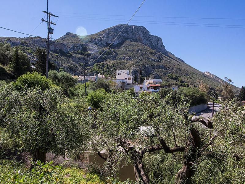 Unterwegs in den Olivenhainen bieten sich immer wieder Ausblick auf das Dorf.