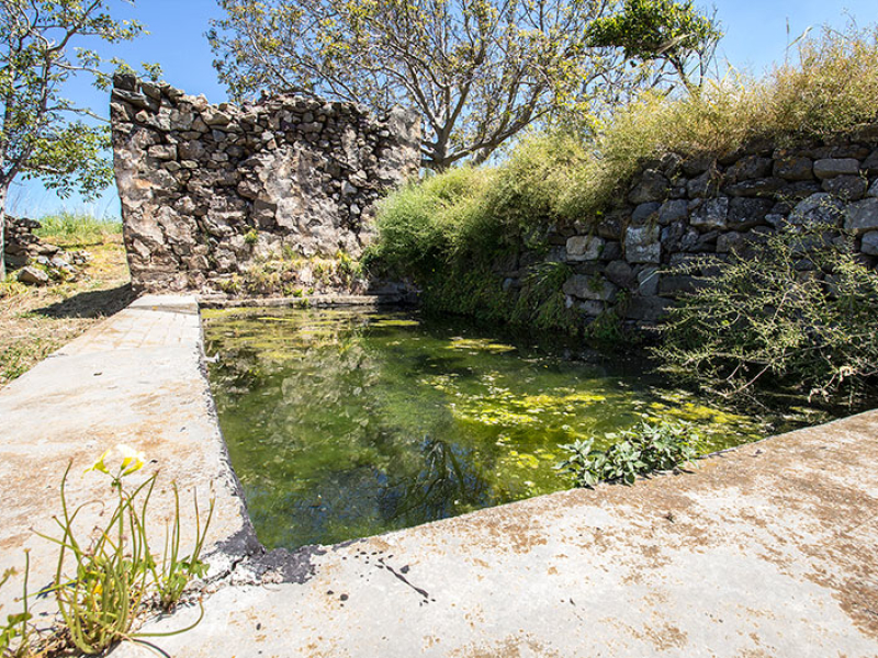 Froschgequake? Klar, in den Zisternen der alten Häuser von Epano Drys sitzen die  Amphibien.