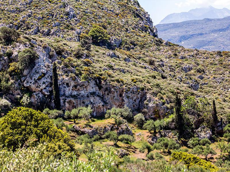 Direkt gegenüber liegen die Thryptiberge mit dem höchsten Gipfel dem Afentis Stavromenos.