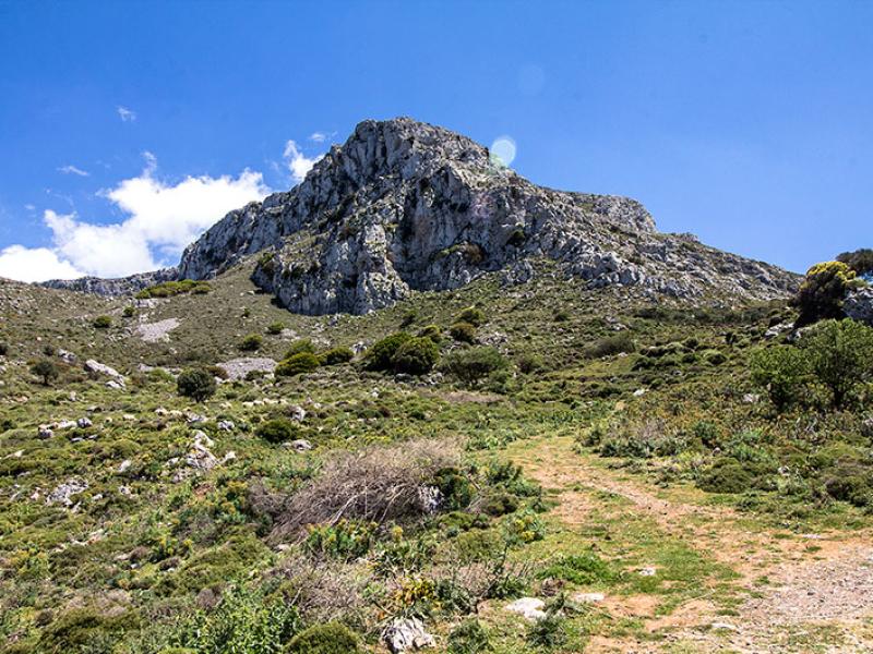 Das ist er, der Gipfel des Prinias. Das minoische Gipfelheiligtum lag nur kanpp unter der Bergspitze.