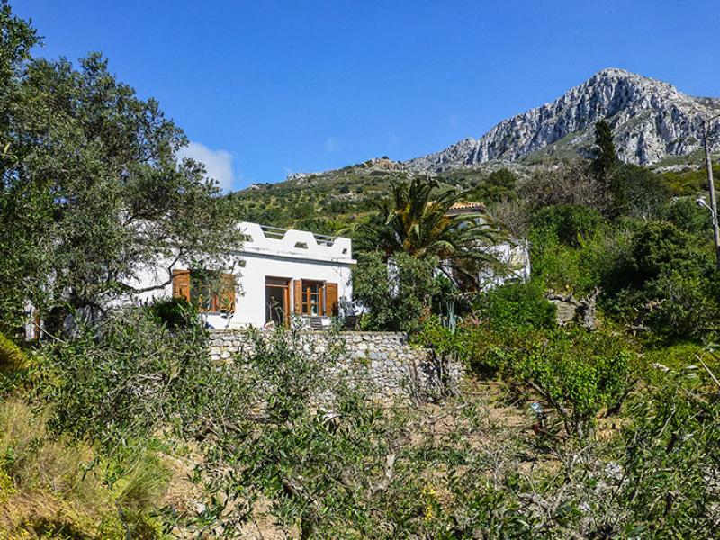 Blick auf das Ferienhaus, hinter der Palme das zweite Haus. Dahinter der Gipfel des Prinias.