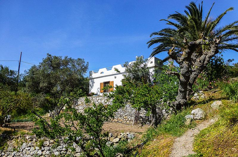 Unser Ferienhaus in Kato Drys mit Palme. Direkt darunter die Feld-Terrasse von Lefteris.