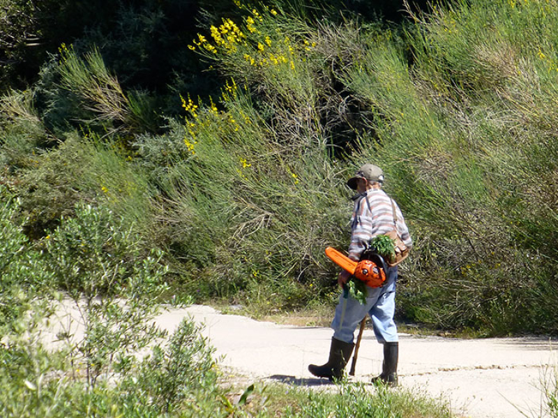 Das ist Lefteris. Er kommt gerade aus den Olivenhainen und hat seine Motorsäge dabei. Hoffentlich können wir das mit neunzig auch noch.